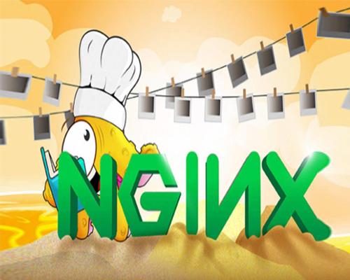 探索 Nginx (engine x) 的秘密-金笛子企业电子期刊