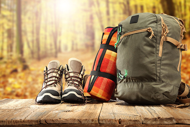 关于旅行,关于事项-金笛子企业电子期刊